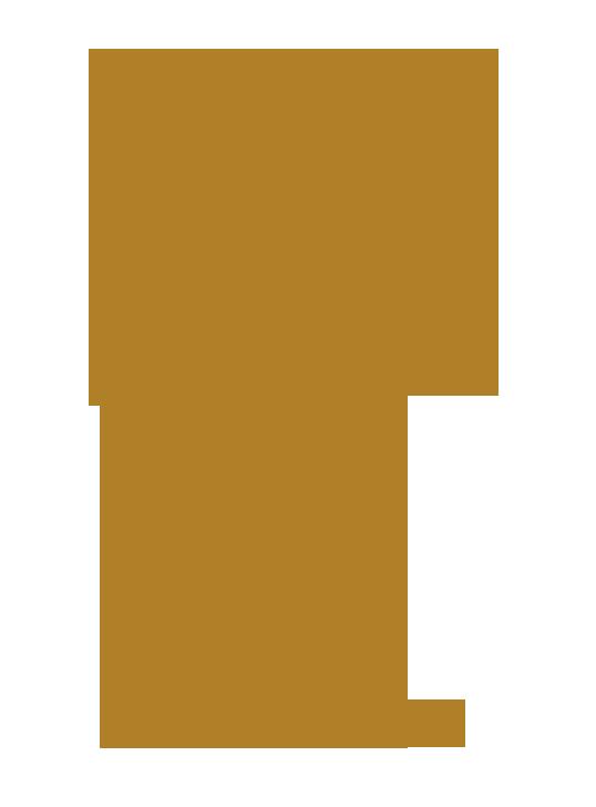 Lenin Saavedra