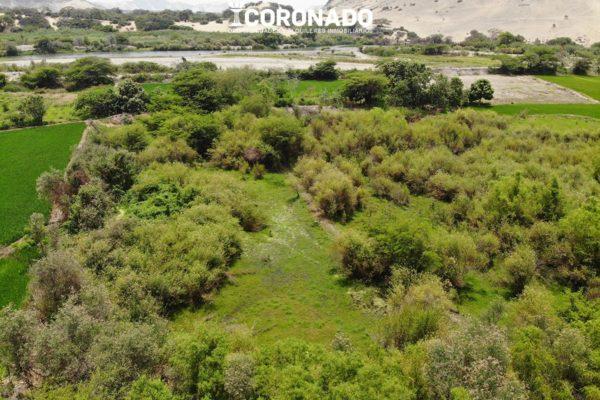 Terrenos Agrícolas El Huabal Chepén