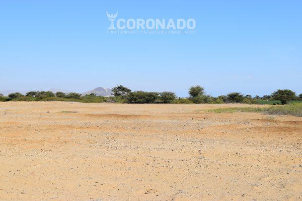 Venta Terreno en Chepén – 11.4 ha