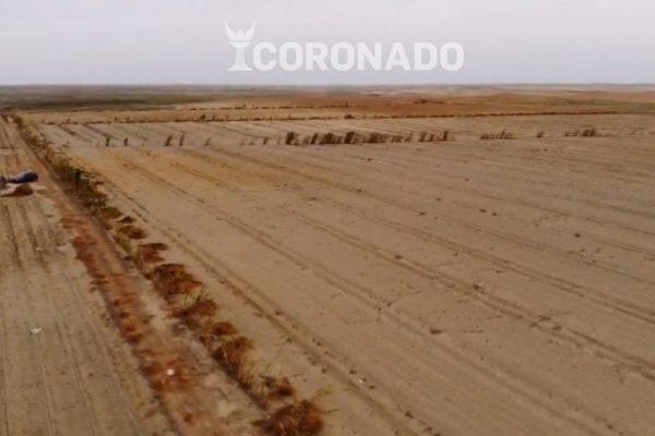 Venta Terreno La Pampa – Macabi Alto – 11 ha